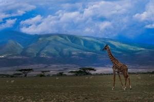 mount makarot in ngorongoro