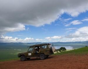 safari company