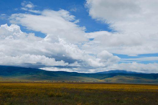 ngorongoro crater safariiii